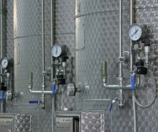 The long road of Prosecco Superiore DOCG: from the vineyard to the glass.  Part Two.